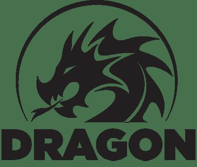 Dragon Bullets Logo